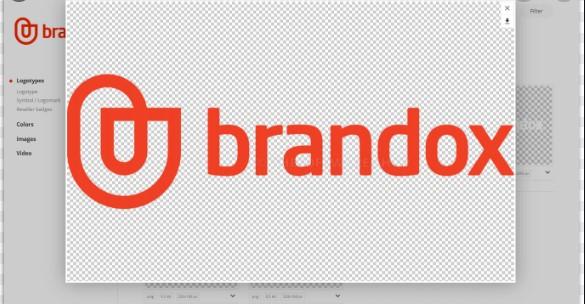Brandox Review