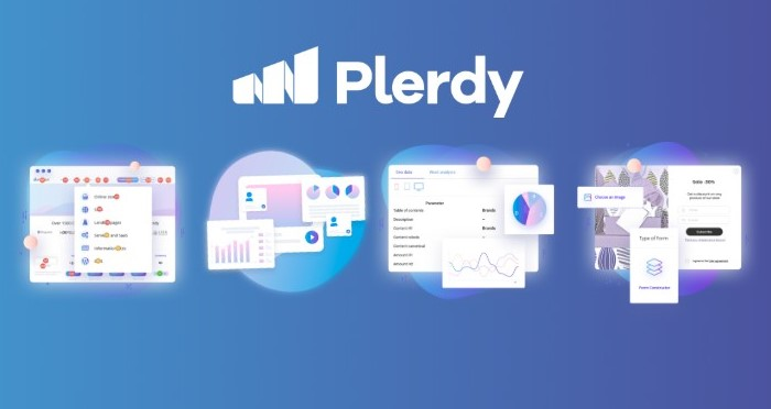 Plerdy Review
