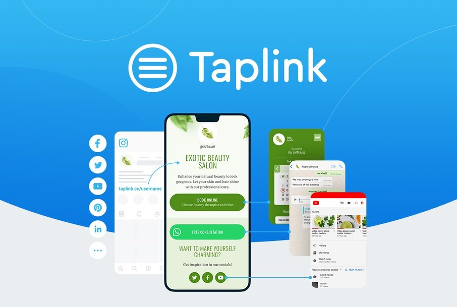 Taplink Review
